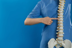 Female orthopedist with human spine model against blue background, closeup. Space for text