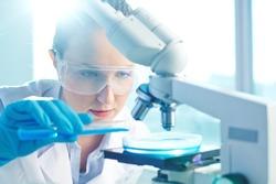Female researcher using her microscope in a laboratory