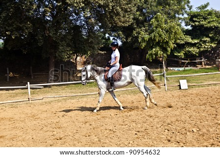 female rider trains the horse in the riding course
