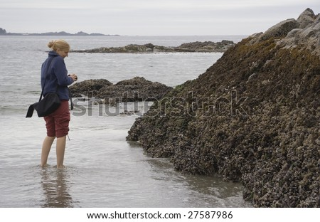 Female Scientist studying intertidal Rocks on the Pacific Coast