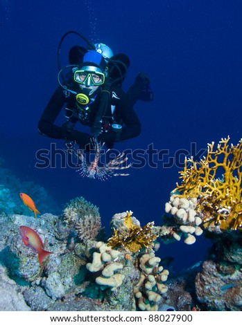Female scuba diver exploring rich coral gardens - stock photo