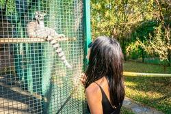 Female tourist is looking to Lemur animal behind the railings in Dendrological park n Georgia.