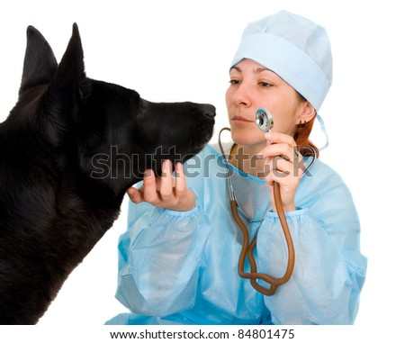 female vet dog treats