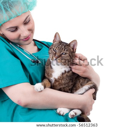 female vet in protective uniform and hat with cat in surgery