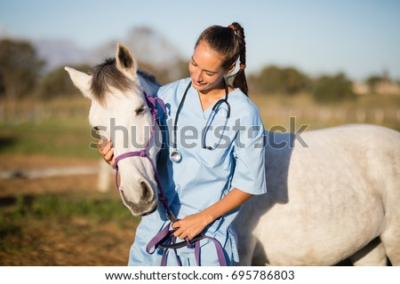 Female vet stroking horse while standing in ranch