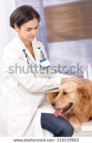 Female veterinary surgeon examining dog at clinic. - stock photo