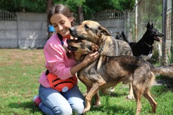 Female volunteer with homeless dogs at animal shelter outdoors