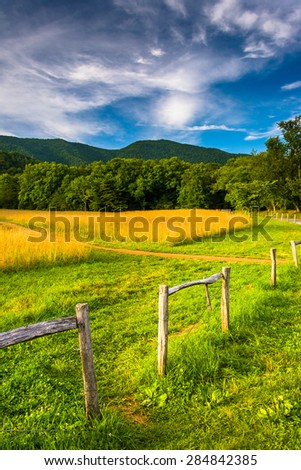 Fence and field at  Cade's Cove, Great Smoky Mountains National Park, Tennessee. #284842385