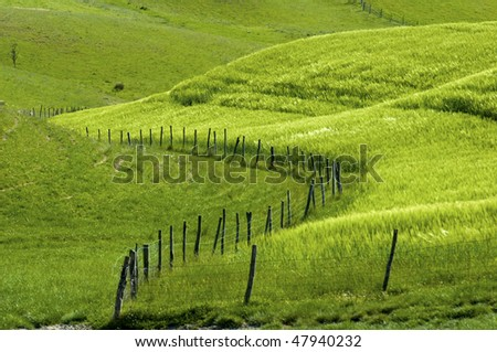 Fence and fields, in the Tuscany region of Italy.