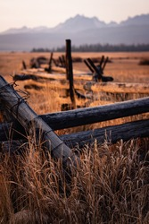 Fence and Golden Grasses as part of an old abandoned ranch in the Idaho Sawtooths near Stanley