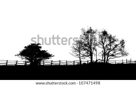 Fence And Trees Silhouette Black And White Stock Photo