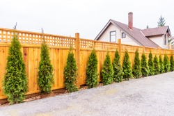 Fence built from wood. Outdoor landscape. Security and privacy concept. Vancouver. Canada.