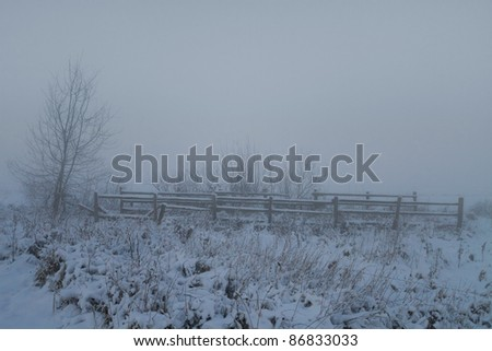 Fence for cattle in the winter and fog blocking the distant view.