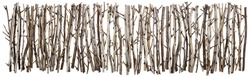 Fence for Halloween  from clumsy dry bush branches line. Isolated collage