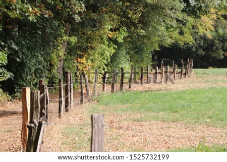Fence in the woods Woods in autumn, Aachen, Germany #1525732199