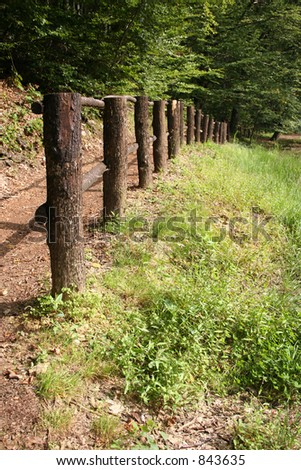 fence in wood