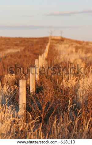 fence leading up the hill, fall colors in the brush. shallow depth of field with focus on the first post