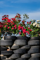 fence made from car tires with roses