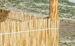 Fence of dry reeds mats in nature.