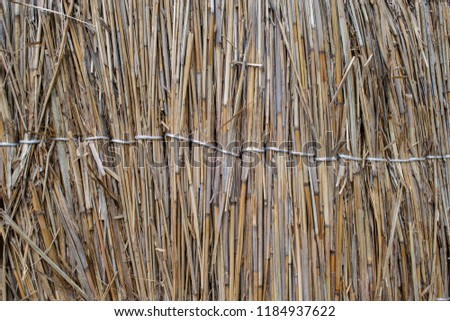 Fence of reeds. Background texture of reeds. #1184937622