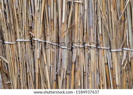 Fence of reeds. Background texture of reeds. #1184937637