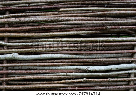 Fence of twigs tree, close #717814714