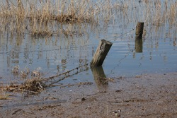 Fence of wooden poles and wire standing in a flooded meadow
