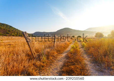 fence on the field a farm, yellow grass at the farmer\'s field in the rays of sunrise, Italy
