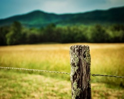 Fence post at Cades Cove Great Smoky Mountains National Park