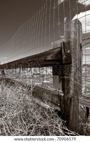 Fence post, monochrome