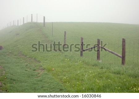 fence posts disappearing into the mist