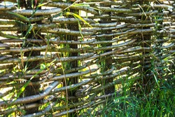 Fence wicker from the vine, texture, background. Wicker vine fence. woven vines texture embossed background. Organic woven willow wicker fence panel suitable for crafts, picnic or gardening background
