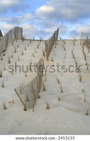 fencing protecting the dunes