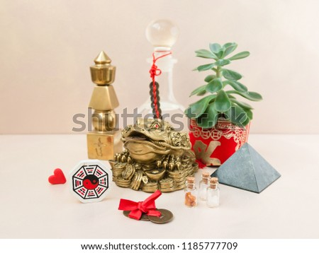 Feng Shui art of harmony of space. Various baubles symbolizing feng shui: Wind music, Chinese coins, pyramid, pagoda, frog, lilac napkin, aroma, salty water. Cozy house. Succulent. #1185777709