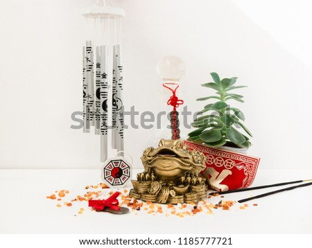 Feng Shui art of harmony of space. Various baubles symbolizing feng shui: Wind music, Chinese coins, pyramid, pagoda, frog, lilac napkin, aroma, salty water. Cozy house. Succulent. #1185777721