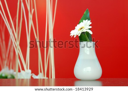 Feng shui decoration with white flower in vase and bamboo on red background