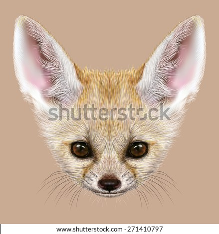 Stock Photo Fennec fox animal cute face. Illustrated Asian, African, Arabian white fennec fox head portrait. Realistic fur portrait of desert fox isolated on tan background.