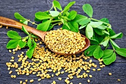Fenugreek seeds in a spoon with green leaves on a wooden plank background