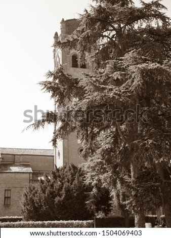 Ferrara, Italy. Ancient San Giorgio church bell tower and big tree. Sepia photo.