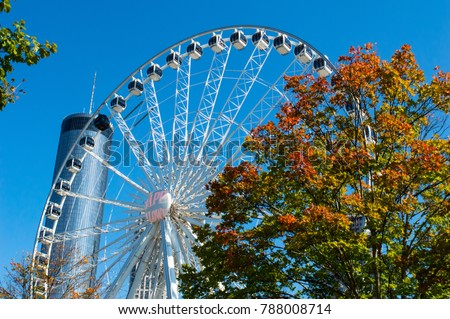 Ferris wheel in Atlanta sits behind a tree displaying beautiful fall foliage and shining under the autumn sun. Tower stands tall in the background. #788008714