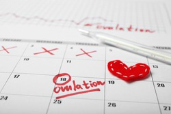Fertile days for conceive and pregnancy in calendar. Infertility cycle test.