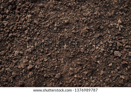 Fertile loam soil suitable for planting, soil texture background. #1376989787