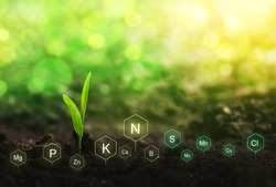 Fertilization and the role of nutrients in plant life. Soil with digital mineral nutrients icon.