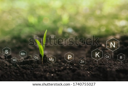 Fertilization and the role of nutrients in plant life. Soil with digital mineral nutrients icon. Stock photo ©