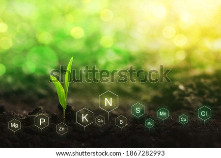 Fertilization and the role of nutrients in plant life. Soil with digital mineral nutrients icon. Сток-фото ©