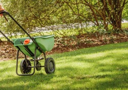 Fertilizing and seeding residential backyard lawn with manual grass fertilizer spreader.