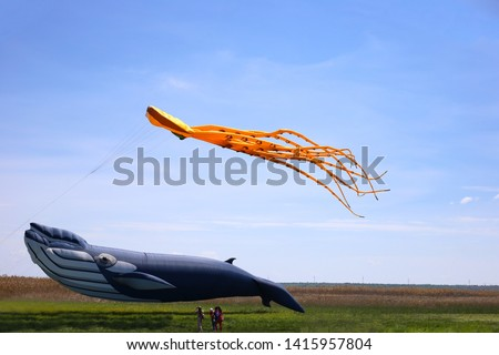 Festival of kites. People take pictures of kites. Large kite in the form of a blue whale over green grass. Orange kite octopus flies in the blue sky