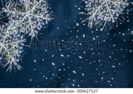 Festive and holiday seasons promotion with blurry and grainy textured background / Abstract festive background / Ideal for christmas and new year celebrations