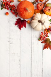 Festive autumn decor from pumpkins, berries and leaves on a white  wooden background. Concept of Thanksgiving day or Halloween. Flat lay autumn composition with copy space.