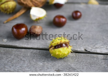 few chestnuts lying on the garden table